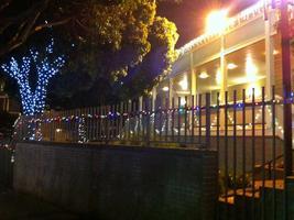 Bayview Community Tree Lighting and Holiday Market