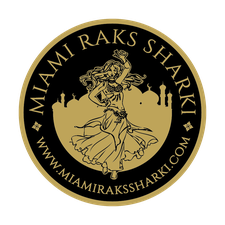 Miami Raks Sharki  logo