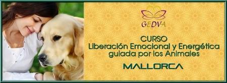 CURSO Liberación Emocional y Energética guiada por los...