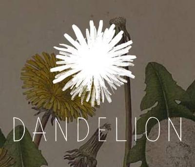 Dandelion & hutch logo