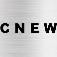 CNEW INTERNATIONAL PTE LTD logo