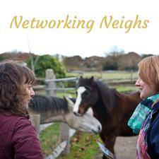 Networking Neighs logo
