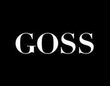 BeGossy logo