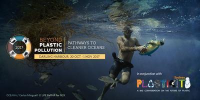 Image result for beyond plastic pollution
