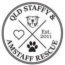 Queensland Staffy and Amstaff Rescue logo