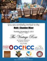 Multi -Chamber Mixer