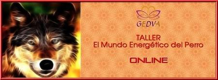 TALLER EL Mundo Energético del Perro ONLINE
