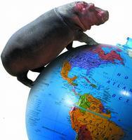 Hippo World Guest Book