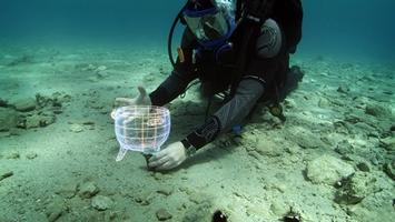 Coming of Age: Underwater Archaeology in the 21st...
