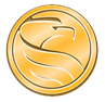 Medallion Financial logo