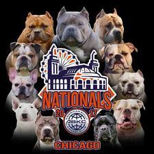 American Bully Kennel Club, Inc. logo