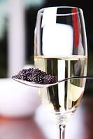 Celebrate New Years Eve with Champagne Wishes & Caviar...