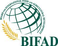 Board for International Food and Agricultural Development (BIFAD) logo