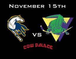 UC Davis vs SFSU Hockey Game
