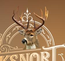 Bucksnort Saloon logo