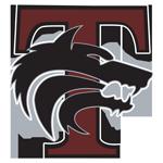 Timberview High School logo