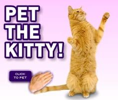 Spice it Up Series: Petting the Kitty