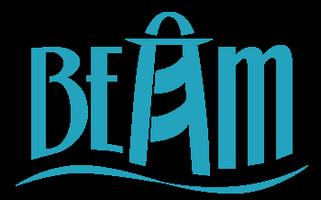BEAM's 2014 Beach Ball