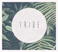 Tribe Promotions logo
