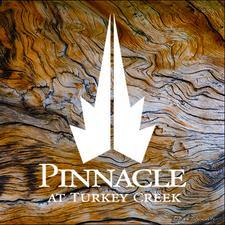 Pinnacle at Turkey Creek  logo