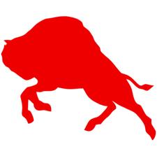 Red Buffalo, LLC logo