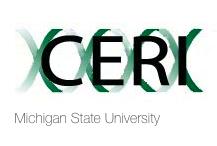 Collegiate Employment Research Institute logo