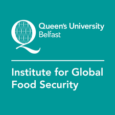 Institute for Global Food Security logo