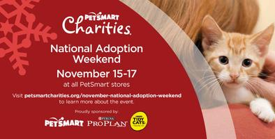 Celebrate the Season by Adopting a Pet at National Adop...