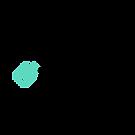 Company System logo