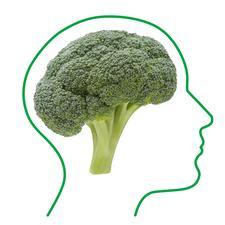 Food for the Brain Foundation logo