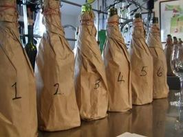 Blind Tasting of Red Wines