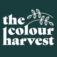The Colour Harvest logo