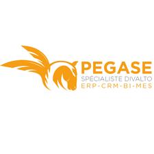 Pégase, Expert de transformation numérique logo