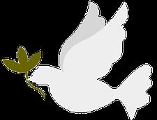 ACEVALP logo