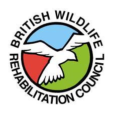 British Wildlife Rehabilitation Council logo