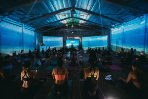 Cosmic Yoga - An Immersive Yoga Experience
