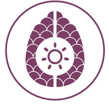 Braenworks  logo
