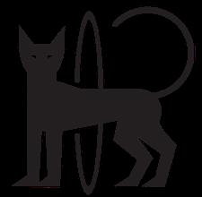 HOOPNATION - FITNESS CLASSES  logo