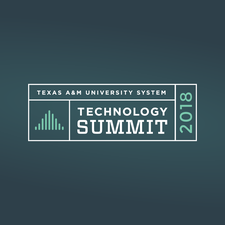 Texas A&M Division of Information Technology logo