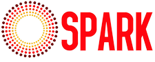 SPARK Reproductive Justice NOW! logo