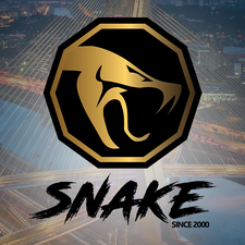 Agência Snake logo