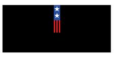Veterans for a Strong America logo