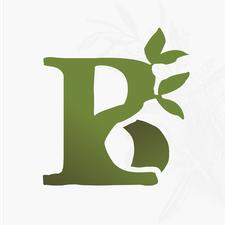 Birthright Initiative logo