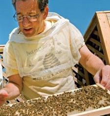 James Fischer and other experienced Urban Beekeepers logo