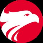 Wizard Batatais logo