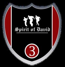 SPIRIT OF DAVID, USA logo