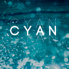 Covenant Young Adult Network (C.Y.A.N.) logo