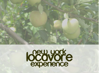 Join the New York Locavore Experience