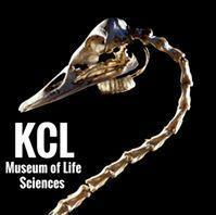 Museum of Life Sciences, Kings College London logo