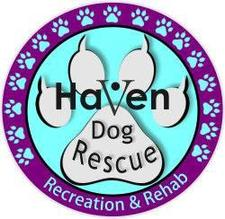 HAVEN DOG RESCUE 501C3 logo